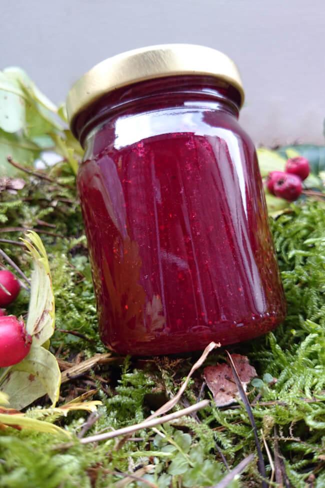 preiselbeer marmelade weilpreiselbeeren selbst kochen