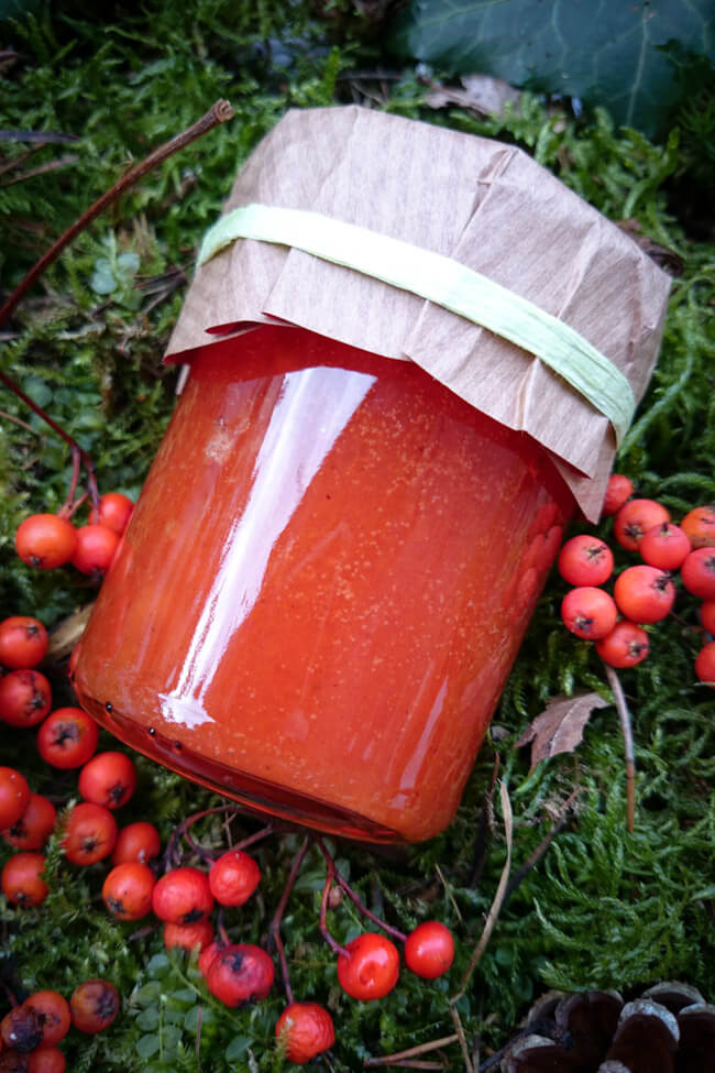 vogelbeer apfel marmelade oma rezept