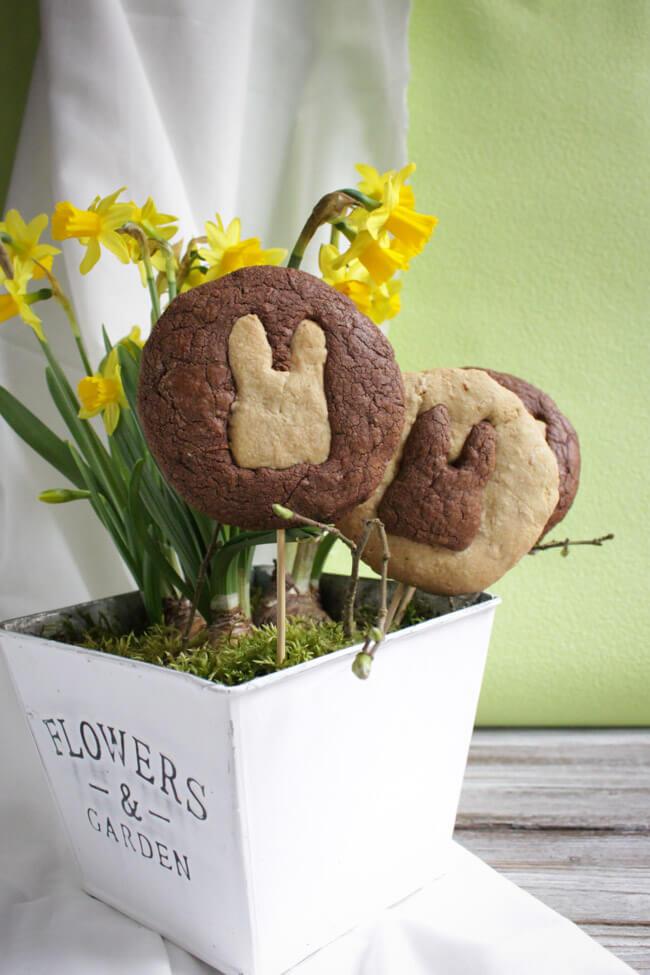 karotten kekse ostern schokolade kakao häschen cookies
