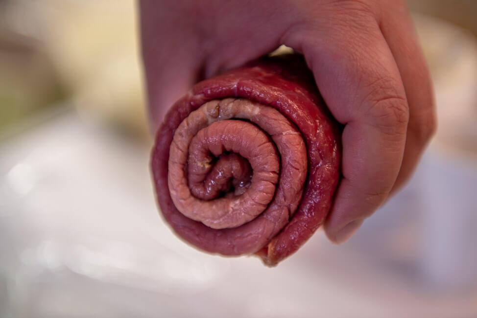 Rinderroulade schritt für schritt Rindsroulade Roulade füllen rollen schrittweise Gewürzgurken Speck Senf