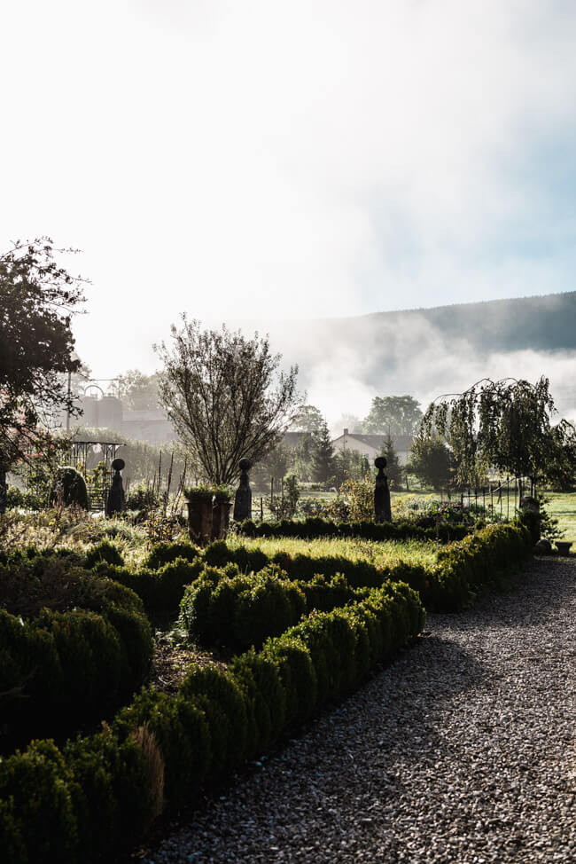 Wermuth Garten Absinth Val de Travers Nebel Morgenstimmung