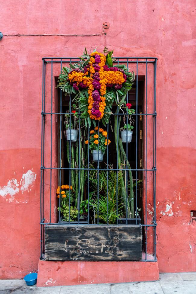 Oaxaca de Juaréz Mexiko Blumenschmuck zum Dia de los Muertos