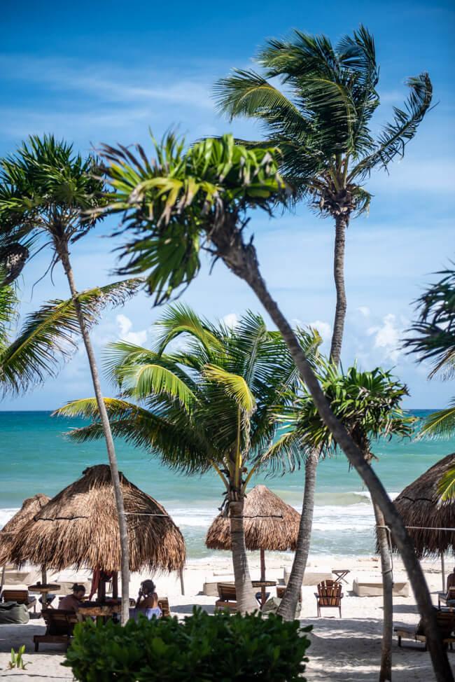 Mexiko Yucatan Tulum Traumstrand Palmen Meer türkisblau weißer Sandstrand