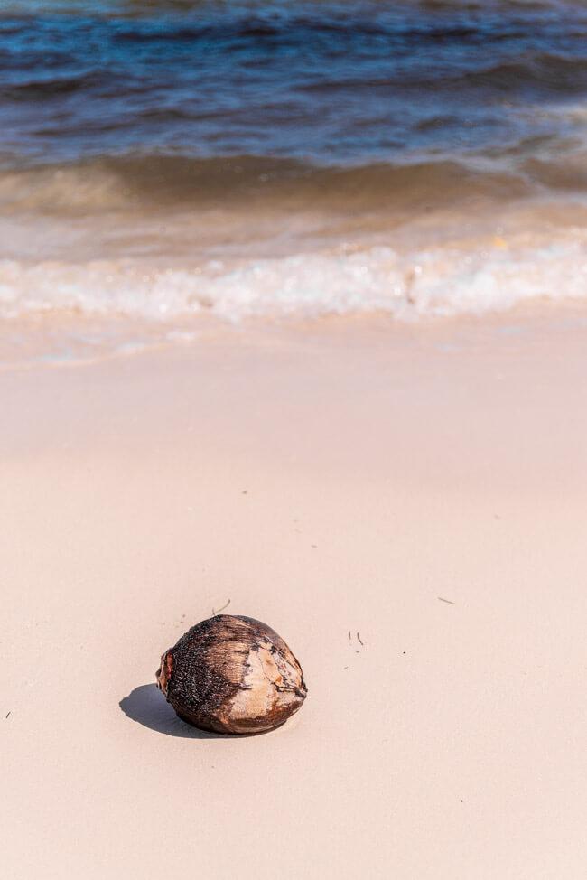Punta Allen Sian Ka´an Nationalpark Meer Strand Traumstrand Palmen Kokosnuss