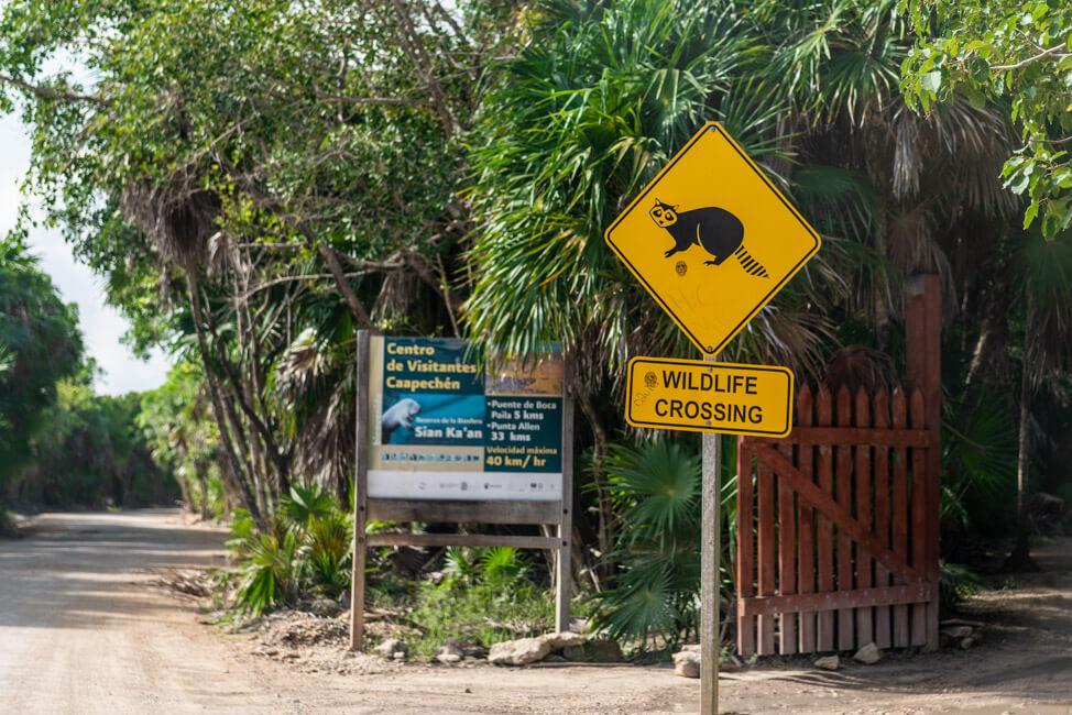 Punta Allen Sian Ka´an Nationalpark Lagune Meer Straßenschild wilde Tiere
