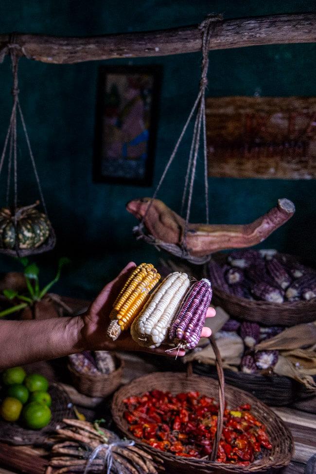 IX CAT IK Mayan Cuisine Valladolid Zentrum