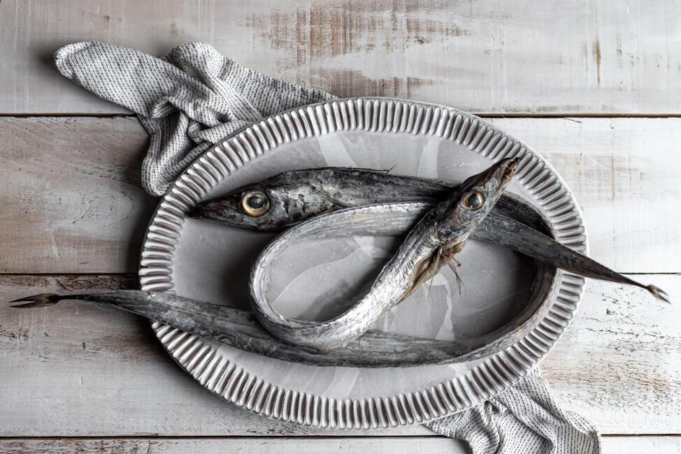 Degenfisch Mittelmeer