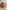Truthahn: Ganze gebackene Baby Pute aus dem Ofen mit Kürbis-Apfel-Stampf. Perfekt für Weihnachten oder Thanksgiving.